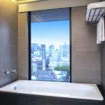 alf4361gb-185892-guest-room-bathtub